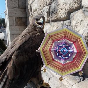 Орлиный глаз шаманская мандала