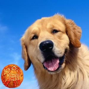 Тотем Собака