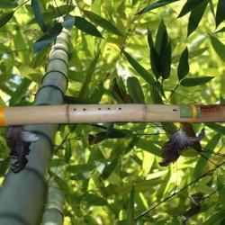 Пимак индейская флейта