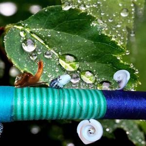 Флейта дождя