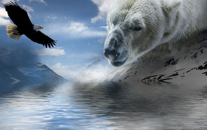 Ритм орла и удар медведя ритуал шамана
