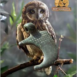 культовый оберег IX век коготь совы