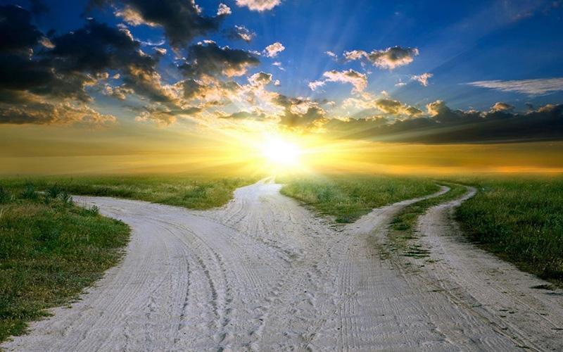 дороги расходятся