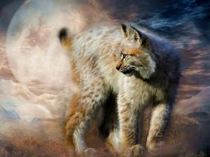 Тотемное животное Рысь