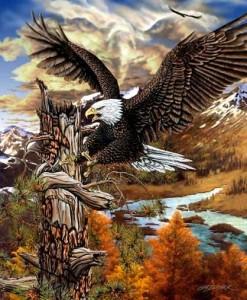 Тотемное животное Орел