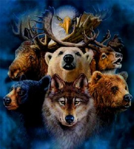 Тотемные животные силы