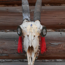 шаманский посох коза 2015