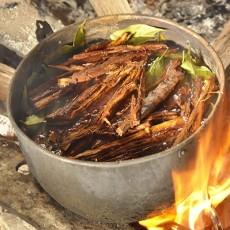 Напиток шаманов Перу убил еще одного туриста