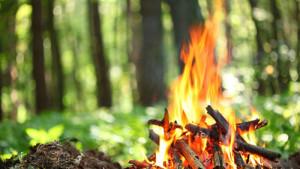 кормление огня