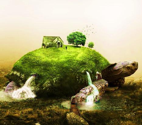 природа черепаха