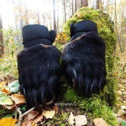 лапы медведя купить