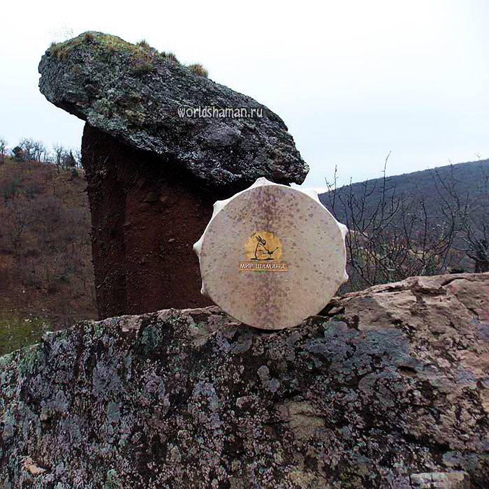 шаманский бубен каменный гриб