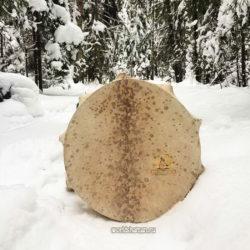 шаманский бубен купить лесной дух