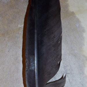 Орлиные перья купить недорого