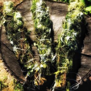 Травяная скрутка для окуривания Очищающая